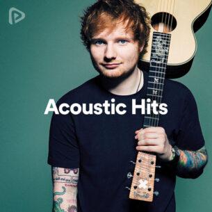 پلی لیست Acoustic Hits