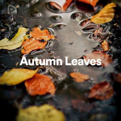پلی لیست Autumn Leaves