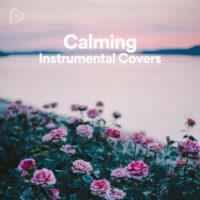 پلی لیست Instrumental Covers