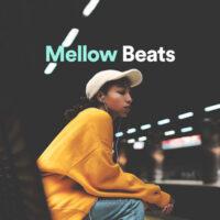 پلی لیست Mellow Beats