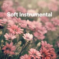 پلی لیست Soft Instrumental