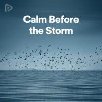 پلی لیست Calm Before the Storm
