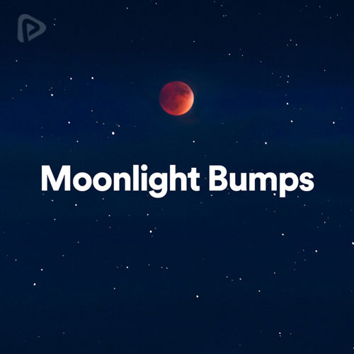 پلی لیست Moonlight Bumps