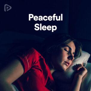 پلی لیست Peaceful Sleep