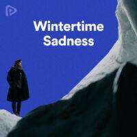 پلی لیست Wintertime Sadness