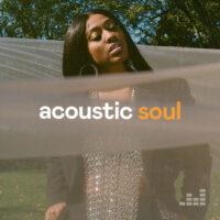 پلی لیست Acoustic Soul